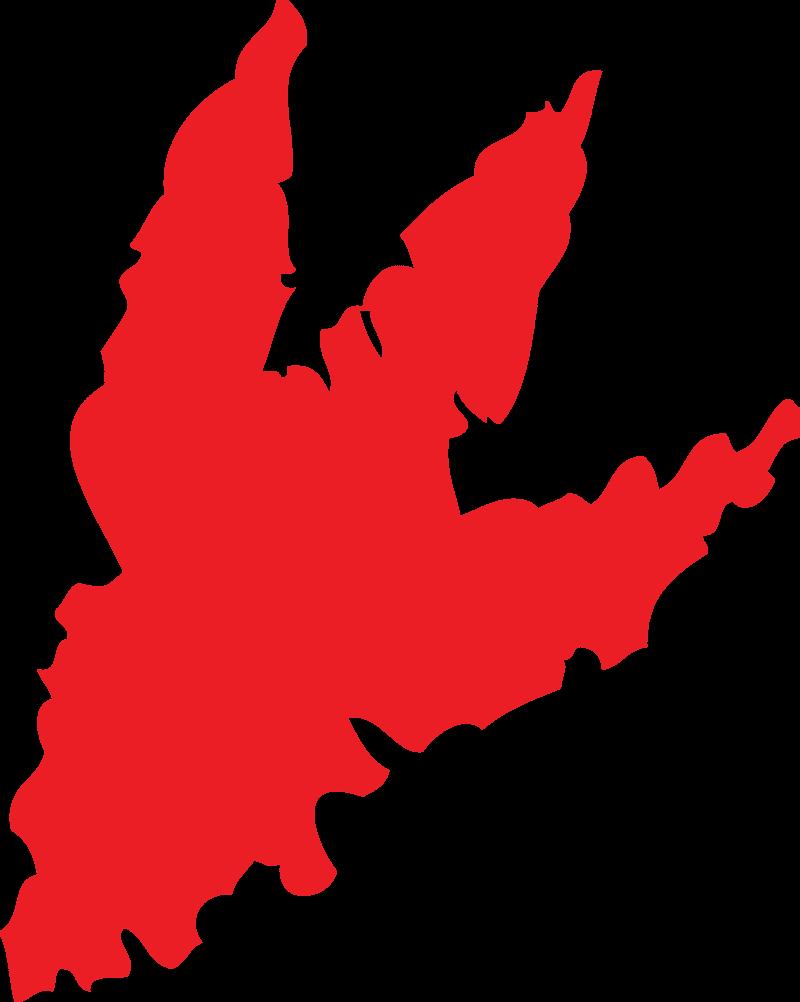StreetSmart MBA Category E - Red Logo
